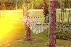 在两棵树之间的一个吊床在日落的一个夏天庭院里 图库摄影