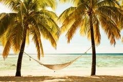 在两棵棕榈树之间的吊床在日落,十字架期间的海滩 免版税库存图片