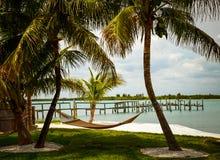 在两棵棕榈树之间的吊床在海滩 库存图片