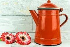 在两种颜色的大丁草与咖啡罐 免版税库存图片