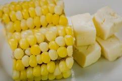 在两halfs的玉米上角度的Cloeeup说谎  库存图片