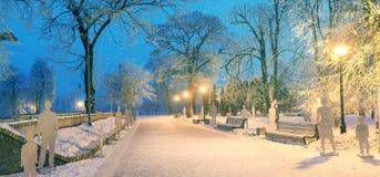 在严酷的天气期间的Mariinsky庭院 库存图片