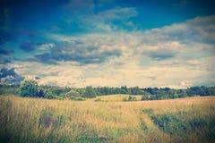 在严重的天空横向之下的绿色草甸 免版税图库摄影