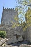 在中世纪塔前面的树枝 免版税库存图片