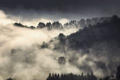 在中世纪布拉索夫小山的雾  库存图片