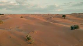 在中东沙漠的飞行 股票录像