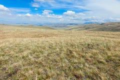 在中亚山的高山干草原  免版税库存照片