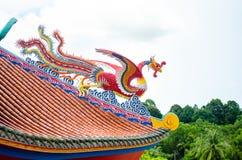 在中国寺庙芭达亚泰国屋顶的天鹅  免版税库存照片