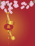 在中国灯笼和樱花的蛇 免版税图库摄影