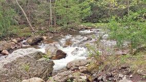 在中坚岩石的Beaverdam小河 库存图片