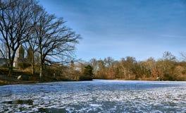 在中央公园结冰的湖,纽约 图库摄影