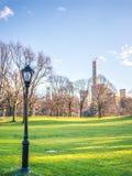 在中央公园 库存图片