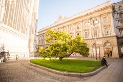 在中央寺院附近的绿色树在米兰 人谈话在电话下 免版税库存图片