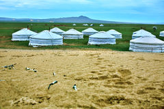 在中央蒙古的蒙古语Ger 库存图片