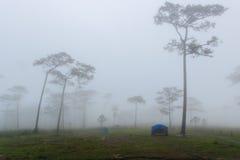 在中间冬天雾的宿营地 免版税图库摄影