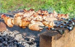 在串的开胃热的烤肉串 图库摄影