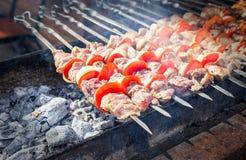 在串的开胃热的烤肉串 免版税库存图片