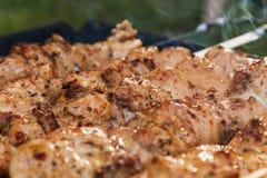 在串的开胃肉 免版税库存照片