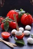 在串的开胃菜无盐干酪用西红柿 免版税库存照片