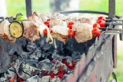在串的开胃鲜美烤肉串 库存图片