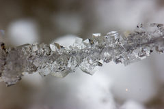 在串的美丽的盐水晶 免版税库存图片