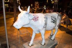 在丹佛街道的公牛,科罗拉多,美国 免版税库存照片