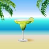 在为装边的类的水多的玛格丽塔酒饮料鸡尾酒与切片  免版税图库摄影