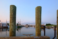 在为靠码头蛤蜊和牡蛎dee将使用的一个新的码头的系船柱 免版税库存照片
