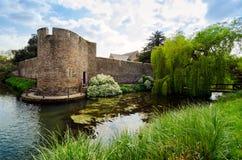 在主教` s宫殿,维尔斯,萨默塞特英国附近的运河在春天Seaso 免版税库存图片
