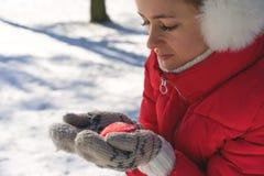 在举行蒸的被编织的手套的手杯在斯诺伊冬天早晨户外的热的茶 妇女举行舒适欢乐红色 库存图片