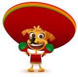 在举行maracas的雨披和阔边帽的滑稽的快乐的黄色墨西哥狗 免版税库存照片