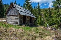 在乌克兰喀尔巴阡山脉的木农夫小屋 免版税库存照片