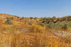在乌克兰干草原的黏土猎物 免版税库存照片