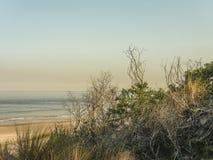 在乌拉圭的海岸的风景 库存照片