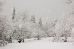 在乌拉尔山脉的冬天 库存照片