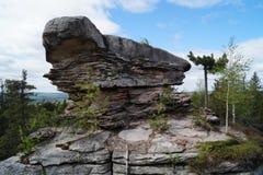 在乌拉尔山脉的石乌龟 库存图片