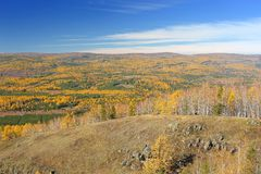 在乌拉尔山脉范围的金黄秋天 库存照片