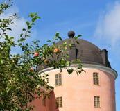 在乌普萨拉城堡塔背景的皇家红色苹果  免版税库存照片