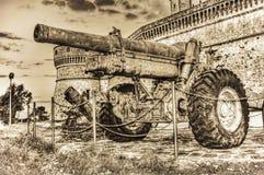 在乌贼属口气的老大炮 库存照片