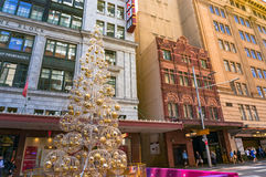 在乔治街道上的圣诞树 免版税库存图片