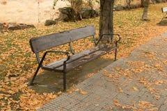 在乘驾的孤立长凳在秋天 库存照片