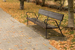 在乘驾的孤立长凳在秋天 免版税库存图片