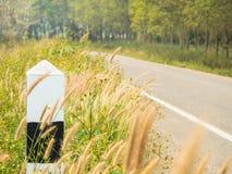 在乡下公路旁边的路标有树和草甸的 库存照片