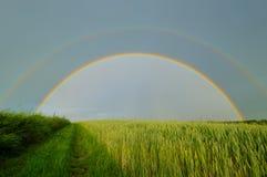 在乡下公路的双重充分的彩虹 库存图片