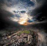 在乡下公路的雾 免版税库存照片