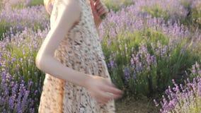在乡下小女孩的生活方式一件美丽的夏天礼服的 收获 影视素材