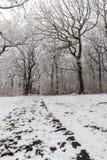 在乡下的降雪 免版税库存图片