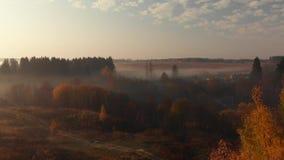 在乡下的飞行在一个有雾的早晨在俄罗斯 股票录像