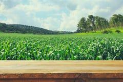 在乡下背景前面的空的土气桌 产品显示和野餐概念 免版税库存图片