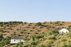 在乡下隔绝的农村房子 图库摄影